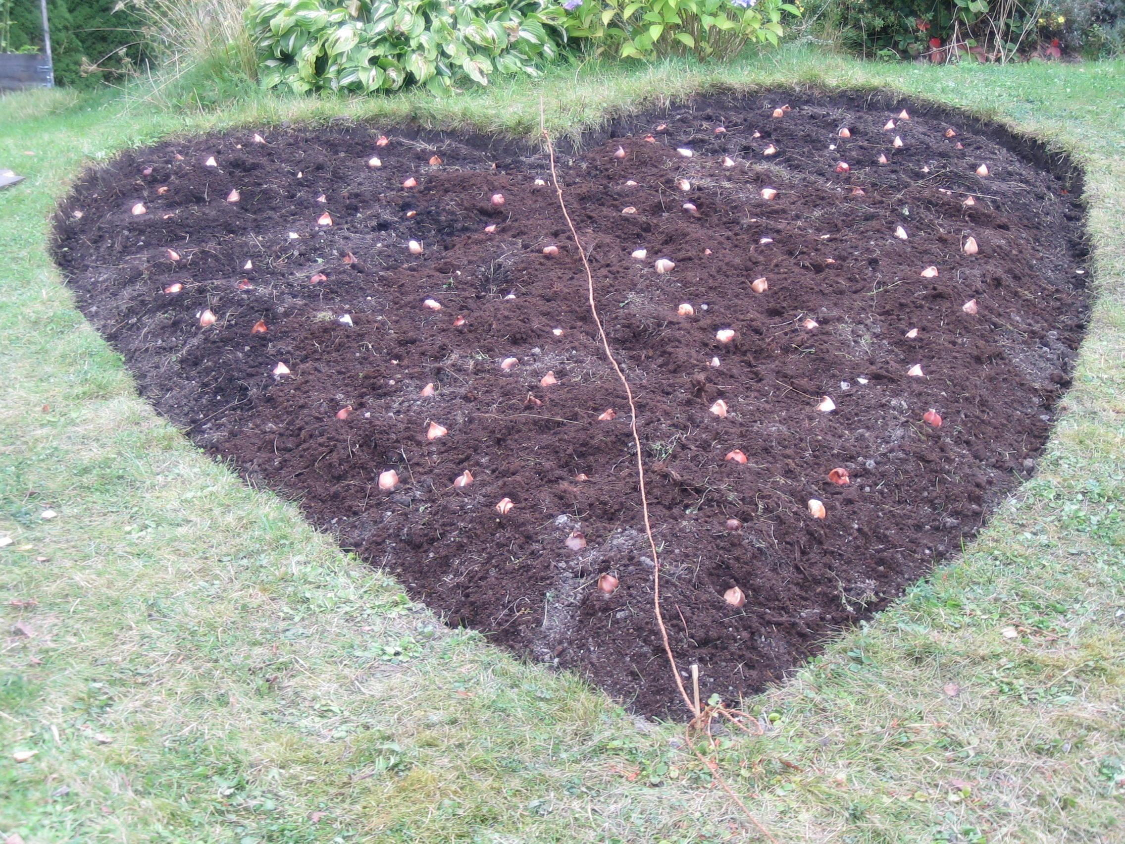 A Heart For The World Crazy Swedish Gardener